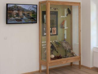 Molnár Lajos madárgyűjteménye